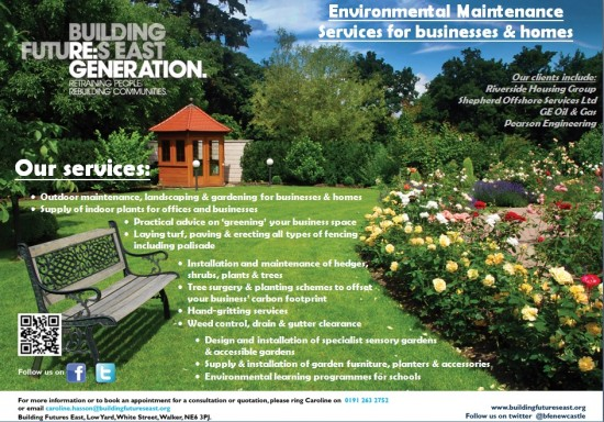 Environmental Maintenance Services for businesses & homes - Building Futures East